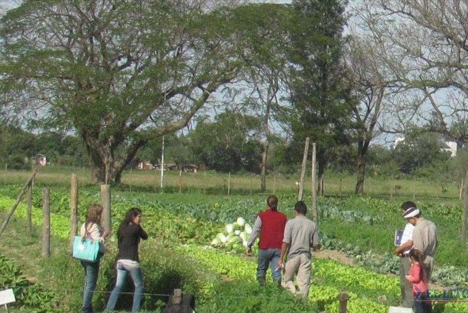 Diario El Litoral | Corrientes