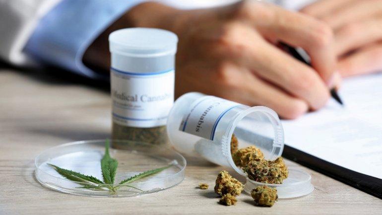<p>Medicina. Salud Pública gestiona el medicamento derivado de la planta de Cannabis.</p>