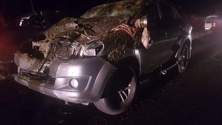 <p>Protagonistas. El vehículo terminó destrozado y el caballo, muerto sobre el pavimento.</p>