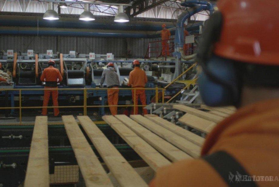 <p>Exportaciones. Las forestales aumentaron un 62 por ciento y el sector fue eje de misiones comerciales del Gobierno provincial.</p>